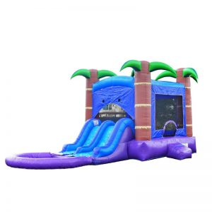 Commercial Enchanted Wet & Dry Slide Combo