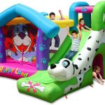 Puppy bounce house with slide